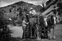USA - IdahoBayhorse Ghost Town - Yankee Fork.2/8-2018 kl. 14.33