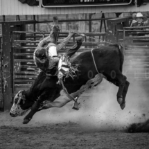 USA - UtahBryce Canyon. Rodeo i Bryce Canyon City.29/7-2016 kl. 19.50