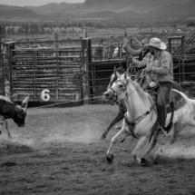 USA - UtahBryce Canyon. Rodeo i Bryce Canyon City.29/7-2016 kl. 19.59