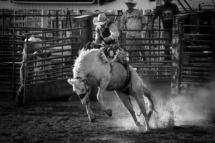 USA - UtahBryce Canyon. Rodeo i Bryce Canyon City.29/7-2016 kl. 19.05