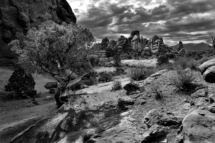 USA - Utah Arches National Park. The Windows Section.20/7-2016 kl. 8.48