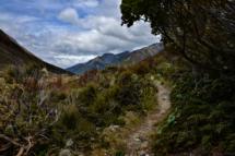New ZealandArthur's Pass. 4/12-2016 kl. 14.01