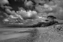 New ZealandKysten nær Pakawau - Golden Bay.26/11-2016 kl. 12.54