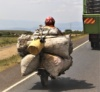 Motorcykel - Med Sign. -